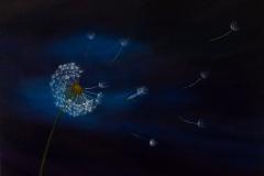 sm_make_a_wish