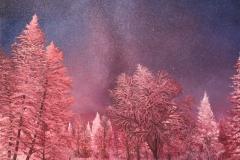 sm_winter_milkyway